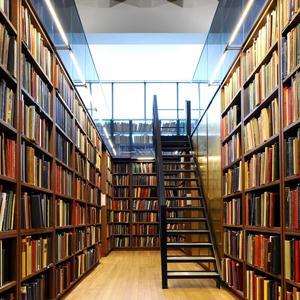 Библиотеки Кочкурово