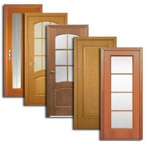 Двери, дверные блоки Кочкурово