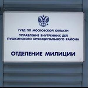 Отделения полиции Кочкурово