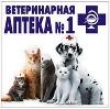 Ветеринарные аптеки в Кочкурово