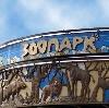 Зоопарки в Кочкурово
